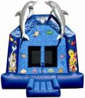 Rental store for Inflatable - Under the Sea Bounce in Waterloo IA
